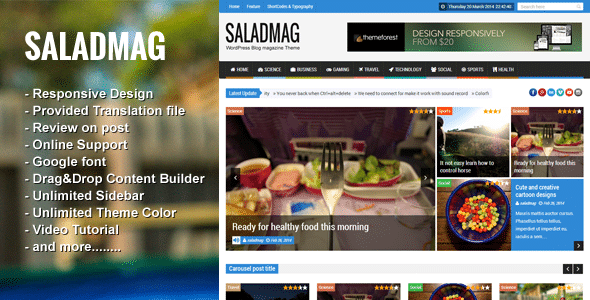 Salad Mag Tema WordPress