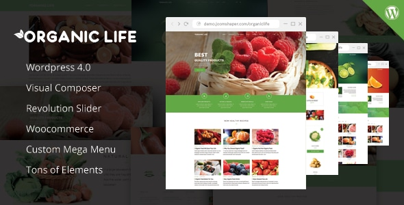 Organic Life Wordpress