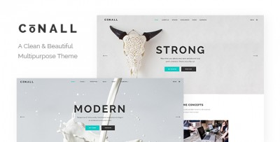 Connal - Tema wordpress multiuso